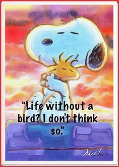 Snoopy Woodstock by Charles Schulz ~ abstract Peanuts Cartoon, Peanuts Snoopy, Snoopy Hug, Peanuts Characters, Cartoon Characters, Snoopy Et Woodstock, Charlie Brown Snoopy, Snoopy Quotes, Peanuts Quotes