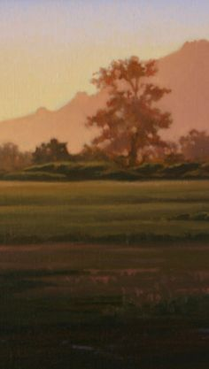 Northern California landscape painting, Sonoma County, original oil painting, sunset http://terrysauve.com
