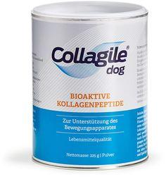 Collagile® dog   Bioaktive Kollagenpeptide - Startseite