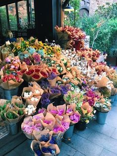 So Many Flowers! My Flower, Beautiful Flowers, Flower Farm, Cactus Flower, Exotic Flowers, Colorful Flowers, Purple Flowers, Wild Flowers, Plants Are Friends