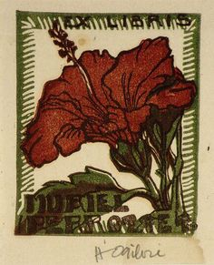 Helen Ogilvie not titled [Hibiscus flower]. c.1944 Melbourne, Victoria ...