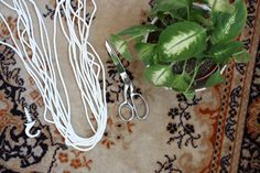 DIY: rope into potted plant hangers
