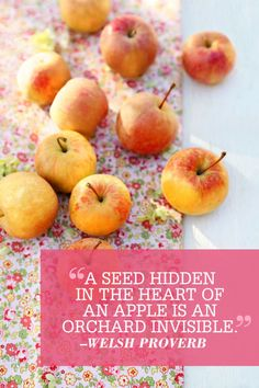 """A seed hidden in the heart of an apple is an orchard invisible."" This inspirational quote/welsh proverb has us ready for fall."