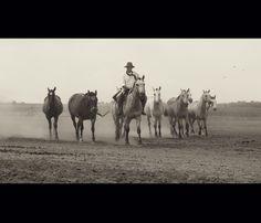 Gaucho, Argentina by Maria Churkina, via 500px