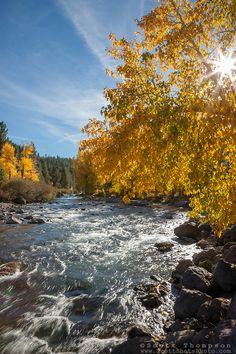 """""""Truckee River in Autumn 6"""" - Photograph of the Truckee River in Autumn near Downtown Truckee, California."""