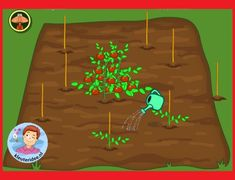 Plants and Funny Animals, Nature and Eco games for toddlers and preschool kids. Eco Game, School Computers, Interactive Whiteboard, Games For Toddlers, Plantation, Fauna, Pre School, Funny Animals, Kindergarten
