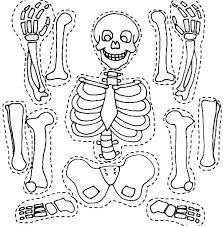 Risultati immagini per halloween lavoretti scuola primaria - Unterrichtsfächer Easy Coloring Pages, Coloring Pages To Print, Printable Coloring Pages, Skeleton Parts, Skeleton Craft, Skeleton Bones, Human Skeleton For Kids, Halloween Activities, Halloween Crafts