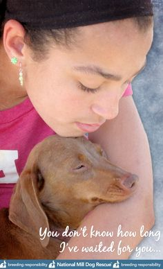 National Mill Dog Rescue - http://www.facebook.com/NationalMillDogRescue