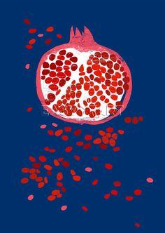 Indigo Pomegranate Art Print by Ana Zaja Petrak Easyart.com