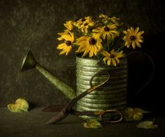 Summer Gold by Amy Weiss