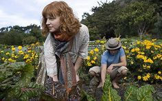 http://i.telegraph.co.uk/multimedia/archive/01454/gardening_1454279c.jpg
