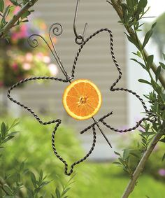 Ancient Graffiti Flamed Daylily Garden Stake | Gardens, Zulily! And  Zulilyfinds