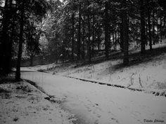 #blackandwhitephotography - Google+ Black And White Photography, Photo Art, Snow, Explore, Outdoor, Google, Black White Photography, Outdoors, Exploring