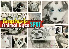 Emphasis Animal Eyes Spot Color Drawing - Create Art with ME Pencil Drawing Tutorials, Drawing Projects, Pencil Drawings, Eye Drawings, Art Projects, Drawing Faces, Project Ideas, Drawing Skills, Drawing Lessons