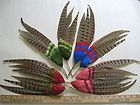 Vintage Feather Millinery Hat Wing Trim 5302 pheasant hair accessory part band