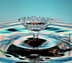 Martin Waugh is an AMAZING artist with water drop photography.  So beautiful!!!