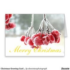 Christmas Greeting Card Stand white envelope incl #Greeting #Card my #design for #sale @Zazzle/alexiotzovphotograph #Christmas #holidays #winter #stockphotography
