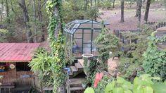 Grandio Elite Greenhouse in a garden sanctuary in Georgia. This is such a great installation idea!