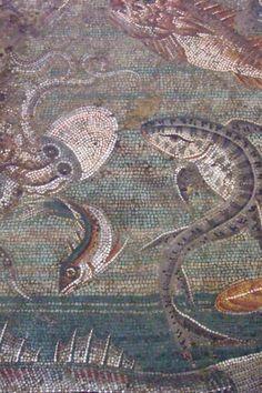 Marine Life Mosaic       #roman #mosaic