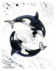watercolor orca - Google Search