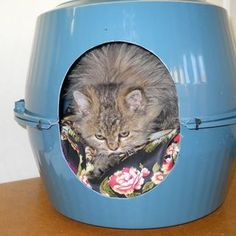 DIY Bowl Pet House. I'd put most of the opening on the top piece though, a let the bottom piece hold more of the pillow.