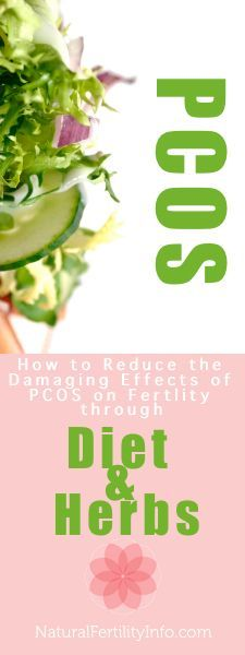 Reduce the effects of PCOS on fertility through diet and herbs.
