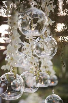 Hang branches of white Dendrobium orchids among glass spheres with floating votive candles for a whimsical, romantic look. Purple or Magenta orchids will look nice as well Wedding Mallorca, White Dendrobium Orchids, Lighted Centerpieces, Wedding Centerpieces, Hanging Candles, Votive Candles, Romantic Look, Reception Decorations, Terrarium