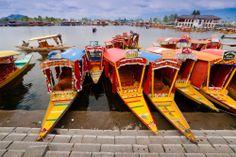 Colourful shikaras add #ColourToLife