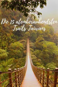Hiking Taiwan // This guide sets out the best day hikes in Taiwan. Plus handy tips to help you hike Taiwan hassle-free. Taiwan, Koh Lanta Thailand, Vietnam, Day Hike, Countries Of The World, Asia Travel, Hiking Trails, Southeast Asia, Good Day