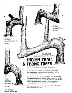 Click the image to open in full size. Native American Tools, Native American Cherokee, Native American Pictures, Native American Symbols, Native American Artifacts, Native American History, American Indians, American Women, Cherokee History