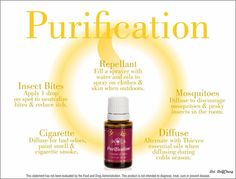 Purification Young Living Essential Oils good in the diffuser for bad odors and cigarette smoke Young Living Purification, Purification Essential Oil, Essential Oils Guide, Essential Oil Uses, Young Living Oils, Young Living Essential Oils, Living Essentials, Air Freshener, Natural Oils