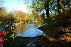 Mirror Lake - The Ohio State University