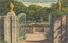Vintage Postcard Diana Pool Gateway Brookgreen Gardens find these postcards for save the dates!
