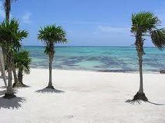Manatee Beach