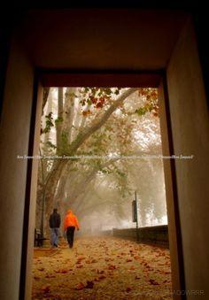 Olhares.com Fotografia   �SHADOW -NUNO SAMPAIO   dois amigos...
