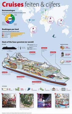 Cruises infographic