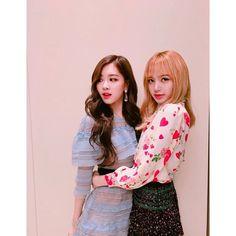 lisa and rose blackpink Kpop Girl Groups, Korean Girl Groups, Kpop Girls, Kim Jennie, Ulzzang, Chanel Rose, Black Pink ジス, Foto Rose, Dior