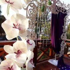 Выездная регистрация с ростовыми орхидеями