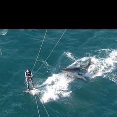 Kite Surfing in South Afrika!