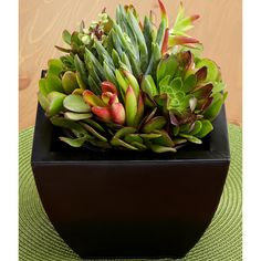 proflowers coupon code february 2015