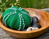 Green Sea Urchin Shell
