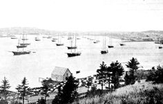 Lunenburg harbour circa 1900