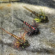 Some electric crawlers I\'m working on, so far so good. These things look wicked under a UV light. #americanmadeflies #amfnation #blueridgecustomflies #flytying #flytyingaddict #flytyingjunkie #flyfishing #nymphhead #troutbum