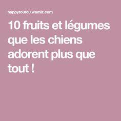 10 fruits et légumes que les chiens adorent plus que tout !