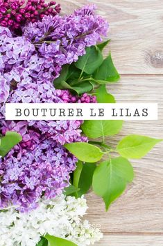 Bouturer le lilas - 1719 Best DIY Projects images in 2020 Vegetable Garden, Garden Plants, Garden Projects, Garden Tools, How To Make Planner, 21st Birthday Cards, Paint Your House, Green Life, Permaculture
