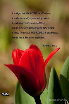 Psalm 34:1-3 ~ I will praise the Lord at all times...