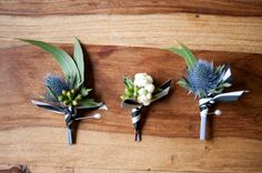 Gum leaf and sea holly boutonnières