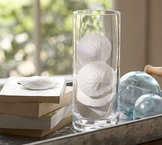 Faux Sand Dollar Vase Filler #potterybarn