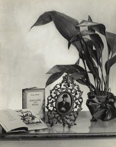 Evelyn Waugh still life composition by Madame Yevonde bromide print, 4 February 1948