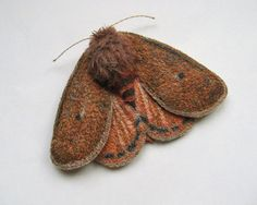 Reserved for Leon James**    Embroidered moth brooch, 'Ruby Tiger', textile art, soft sculpture, cottage chic.